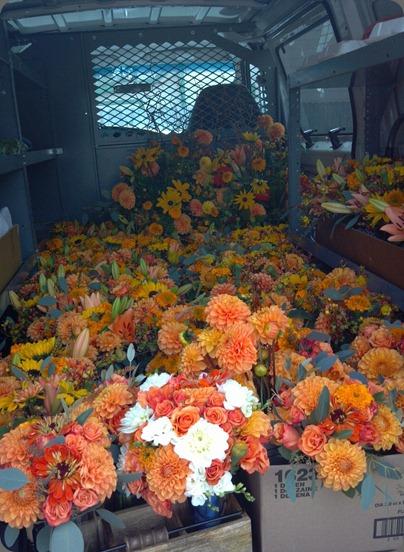 398388_10151239543865152_595323742_n flora organica designs