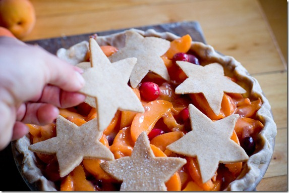 Apricot pie-3599