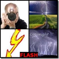FLASH- 4 Pics 1 Word Answers 3 Letters