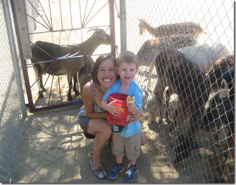 08 04 13 - Sierra Safari Zoo (10)