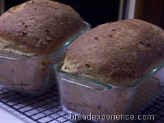 sprouted-barley-bread 031