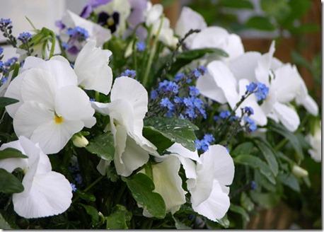 15 blomlåda