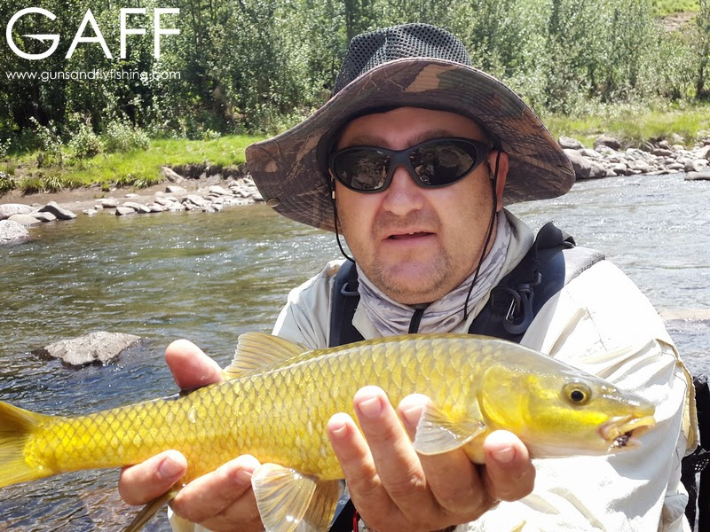 lesotho-yellowfish-flyfishing-trout (7).jpg
