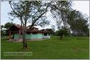 _P6A2063_safari_mudumalai_bandipur_sanctuary