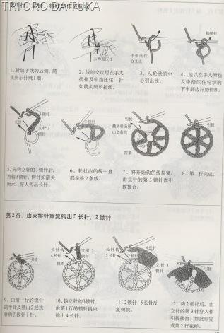 pontos 14