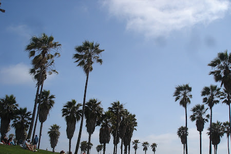 Plaja Venice Beach de langa Los Angeles: Poti iesi la un picnic