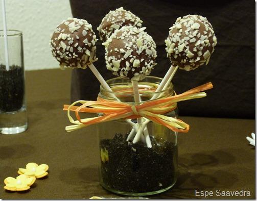 cake pops espe saavedra (1)