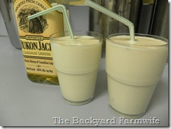 snakebite shake - The Backyard Farmwife
