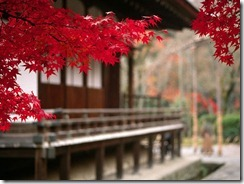 Templo de Tenryuji