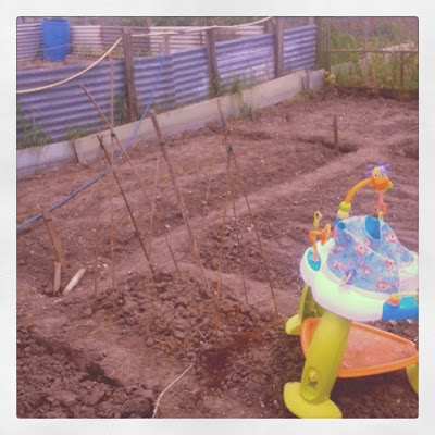 how to allotment garden with kids