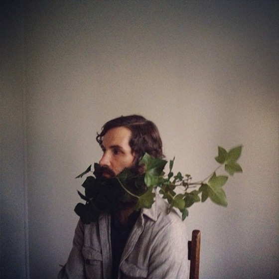 ivy-beard