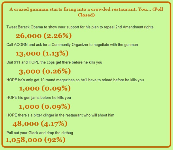 gun poll results copy
