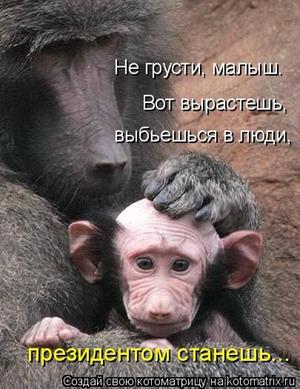 Не грусти, малыш...