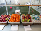 Healthy Living Event - Soccer Centre - 0043.JPG