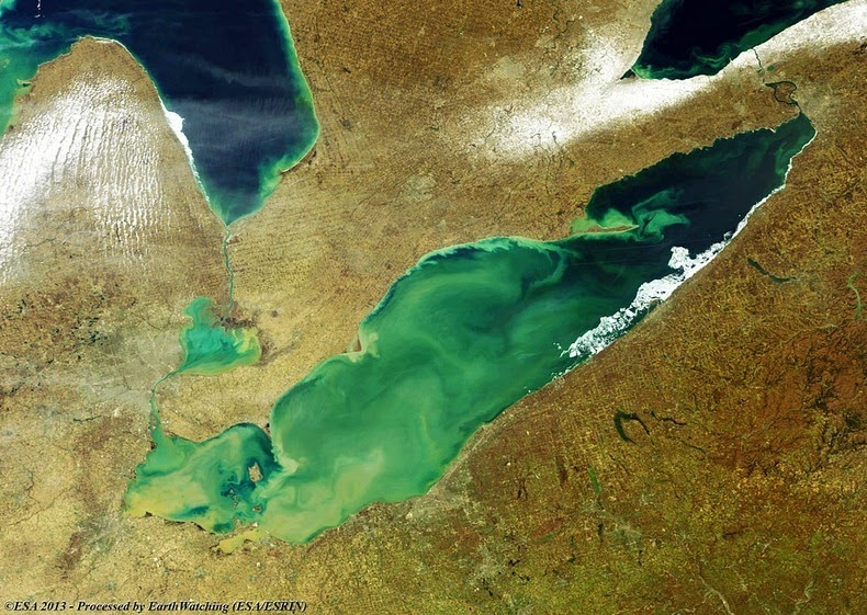 lake-erie-algae-4