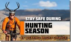 hunting visibility