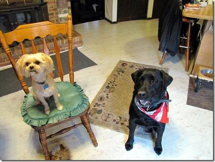 Buddy & Rigg's11-2012b