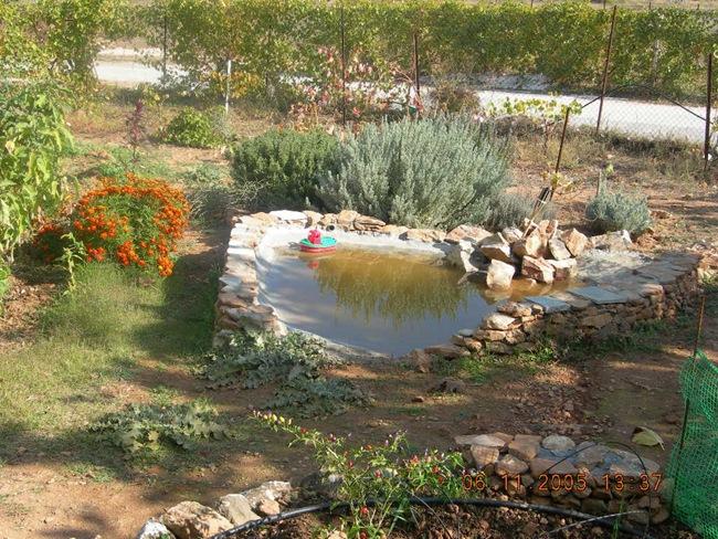 Φτιάχνοντας λιμνούλα για τον κήπο σας