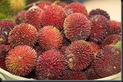 Buah-buahan tempatan 011