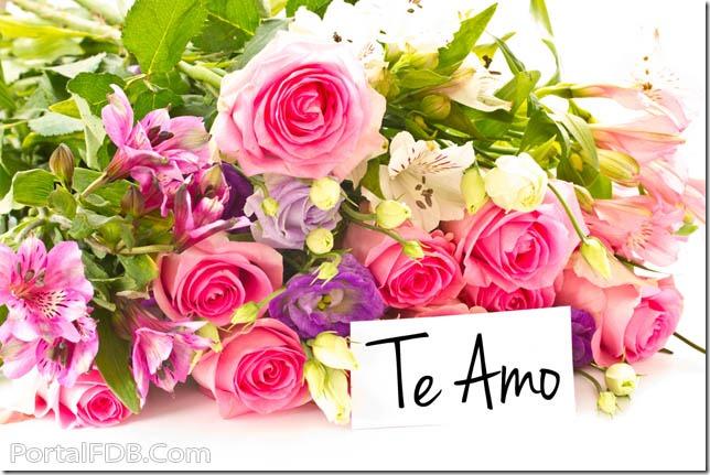 amor (12)