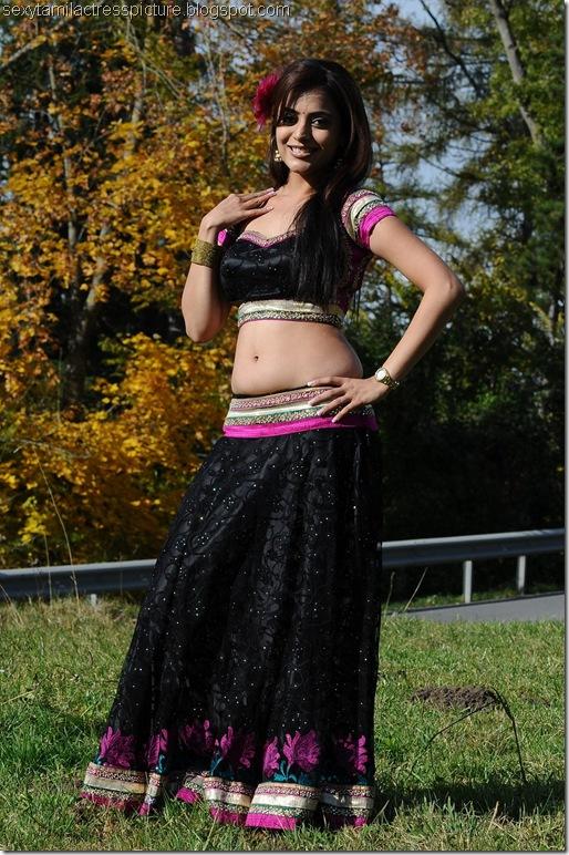 Nisha_agarwal_hot_navel_images