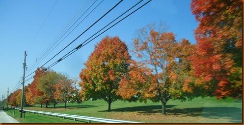 Fall shot 3