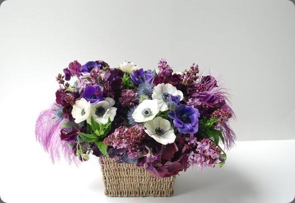 207883_216189285073659_159860124039909_898368_2067186_n   seed floral
