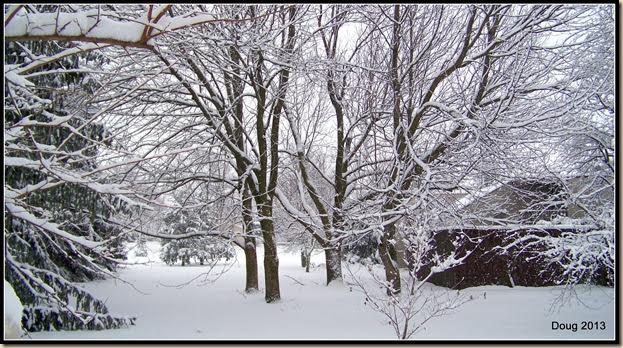 1-snow2013 005
