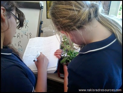 The Great Plant Experiment - Let students build experiments using the needs of a plant (air, soil, light, water) as the variables in a student designed experiment using the Scientific Method - Raki's Rad Resources - Making Observations