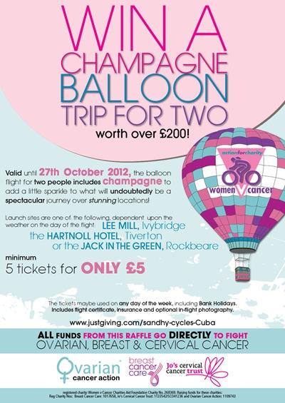 balloon raffle poster
