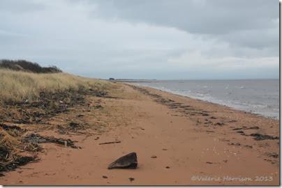 1-Mersehead-beach