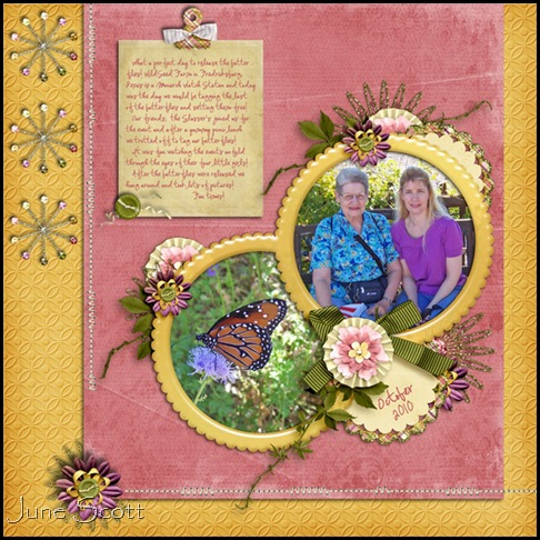 WildSeed_Farms