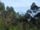 A view of Burangrang from the slopes of Rakutak (Dan Quinn, November 2012)