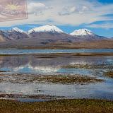 Arica - Parque Nacional Lauca  (27 de 48).jpg
