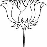 lotus-1-coloring-page.jpg