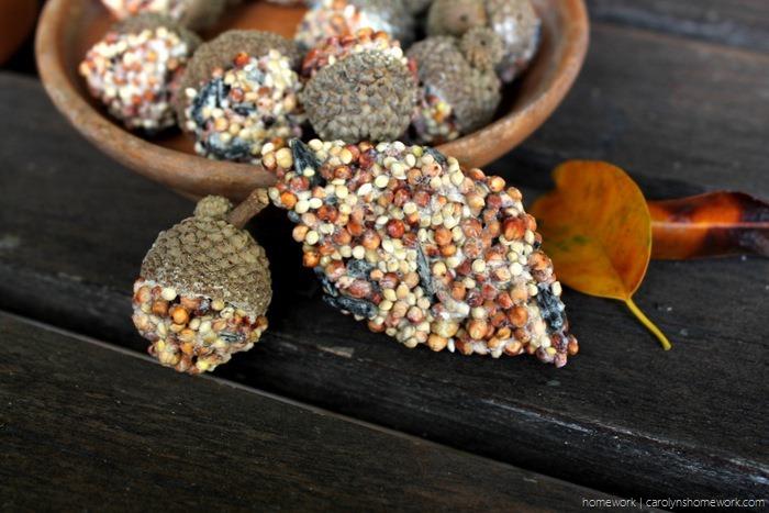 Birdseed Acorn Cakes via homework - carolynshomework (9)