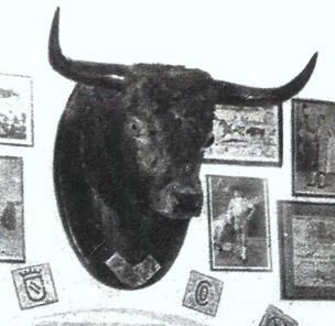 Salmanquino (Toros en Málaga-Fco Ortiz Mejias) 001