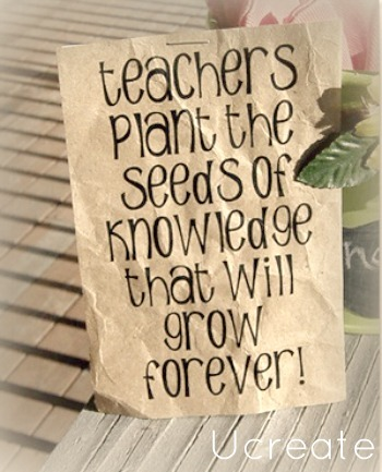 teachers plant the knowledge