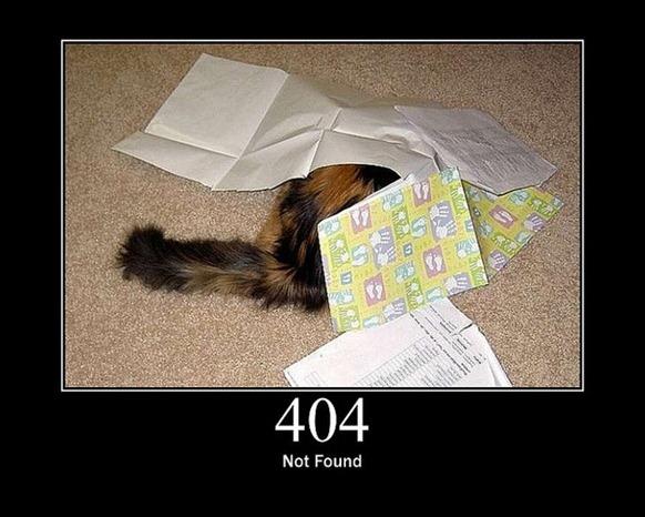 HTTP-Status-Cats-08