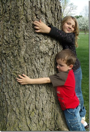 treehugger3