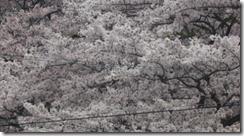 螢幕截圖 2014-06-04 13.57.56