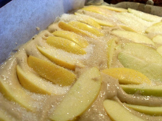 Flex-Erlings æbleklage