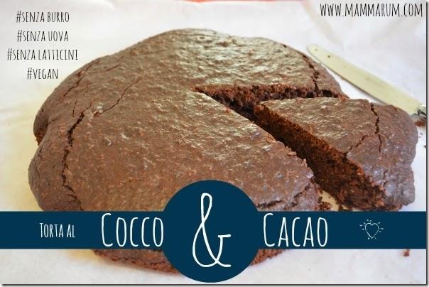 ricetta torta cocco cacao vegan 2