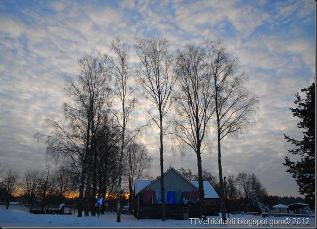 talvipäivä seisauksen jäkeinen aamu päivä 031