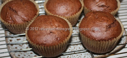 Mocha Chocolate Chip Muffin large display II