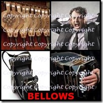 BELLOWS- 4 Pics 1 Word Answers 3 Letters