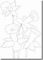 primavera (27)