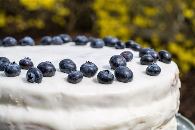 Lemon Blueberry Cake (1)