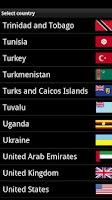 Screenshot of Flags Widget