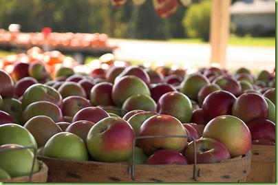 mi apples4